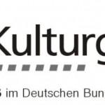 """PAK: Oldtimer-Kennzeichen, Sitzung 6.2.2012 - Update Entwurf der """"Charta von Turin"""""""
