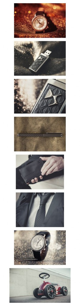 ds-accessories-02