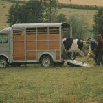 """Citroën Typ H: Der Transporter """"par excellence"""" wird 70 Jahre alt"""